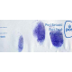 Kit solution Leuco Crystal Violet - 500 ml ( Flacons A + B )